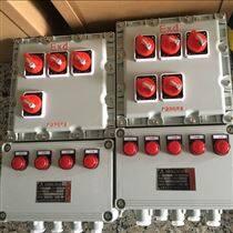 综合管廊工程防爆配电箱