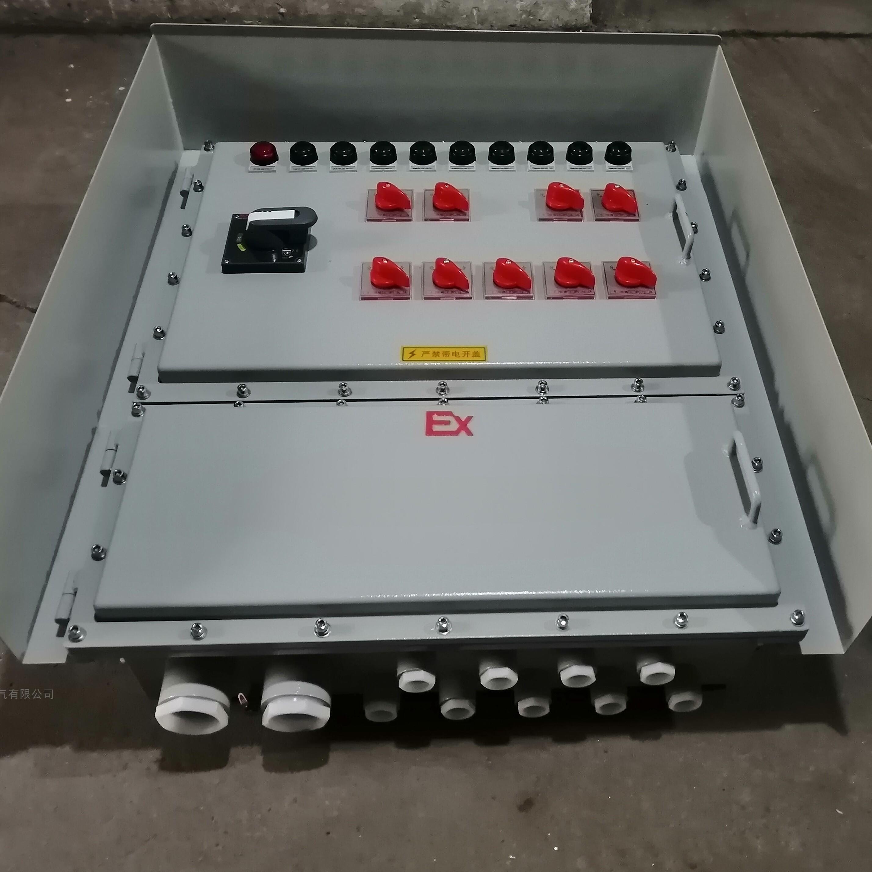 防爆配电箱碳钢材质1总9分带防雨罩