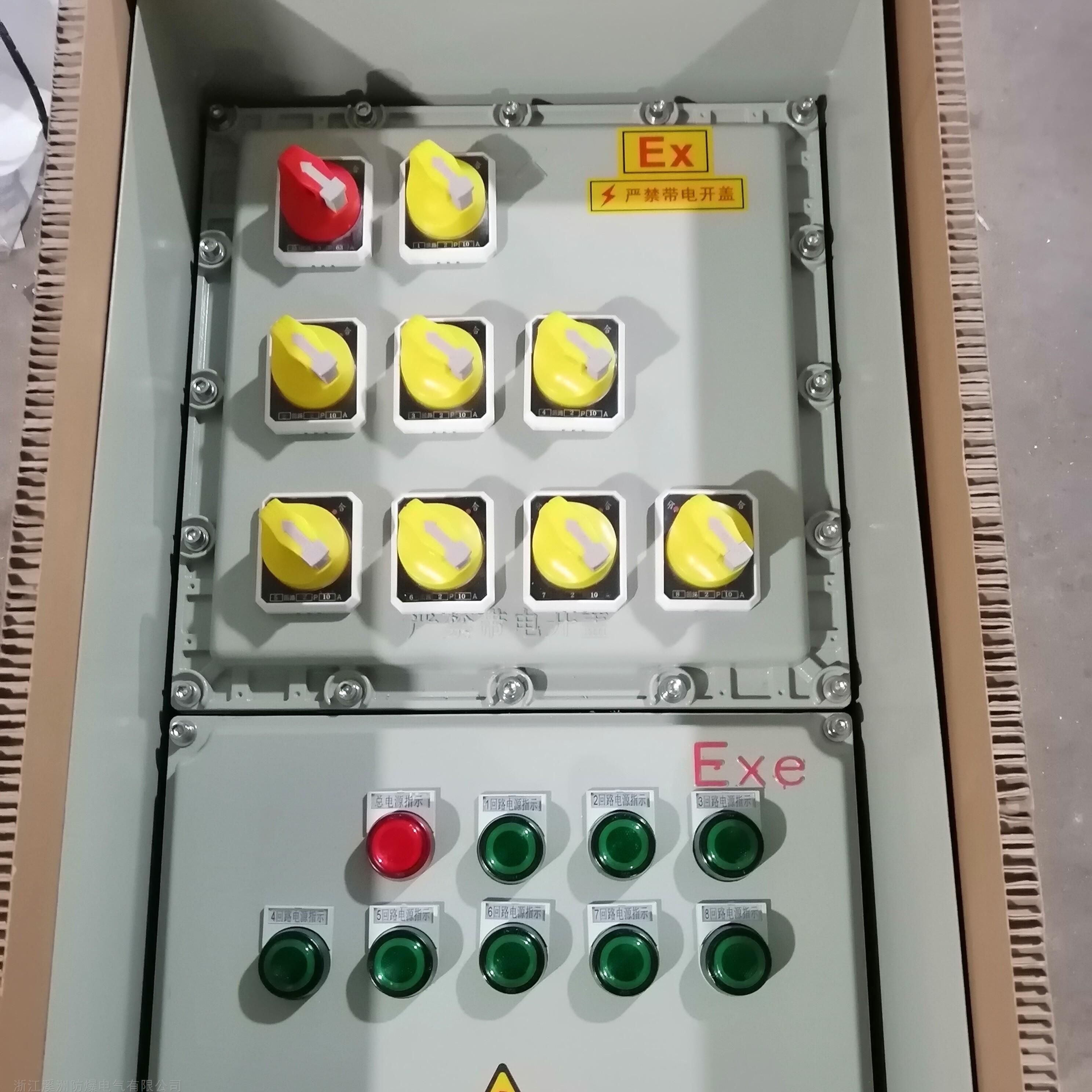 防爆配电箱1总8分带防雨罩户外型