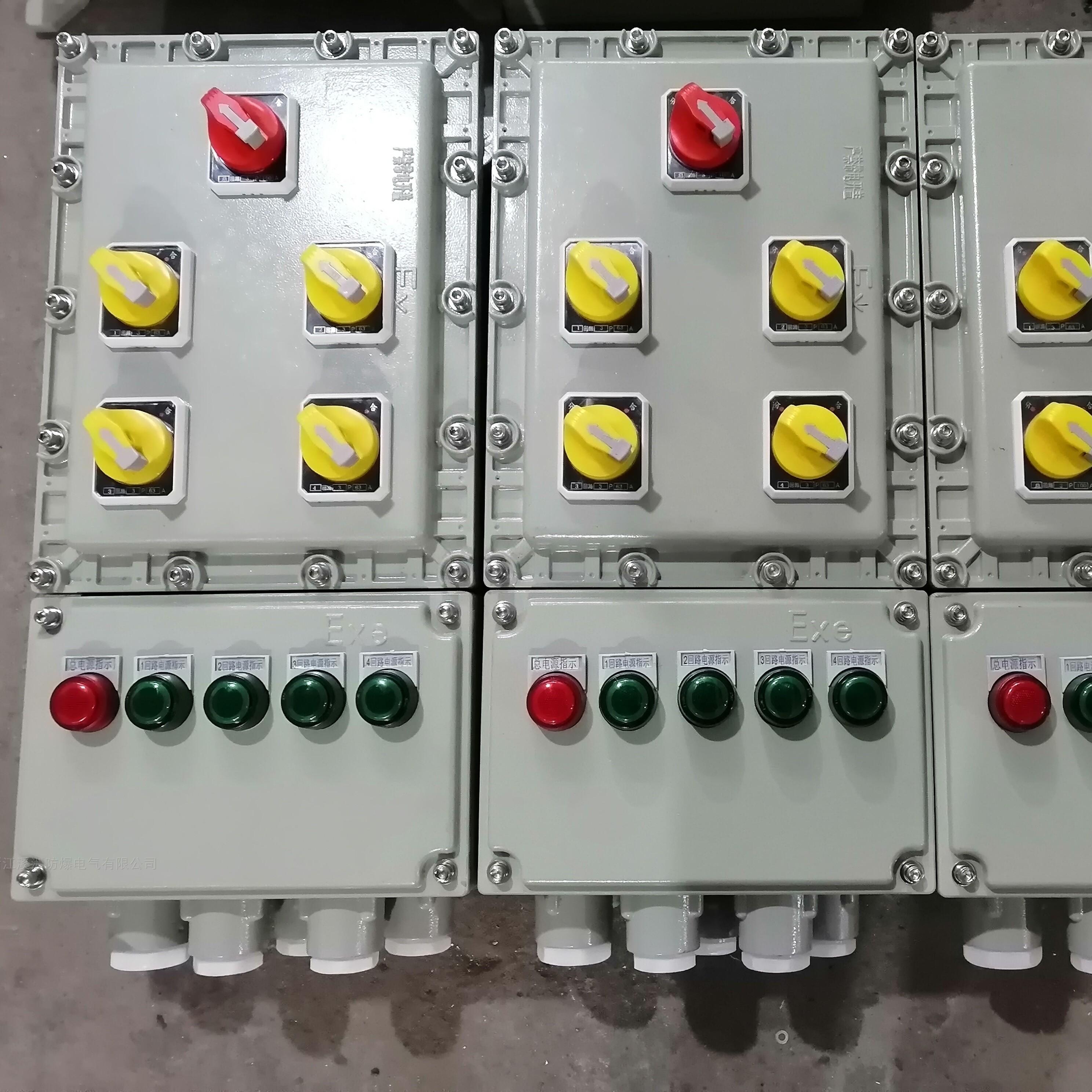 防爆配电箱1总4开挂壁式