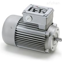 MCE 244PT意大利Mini motor齿轮电动机