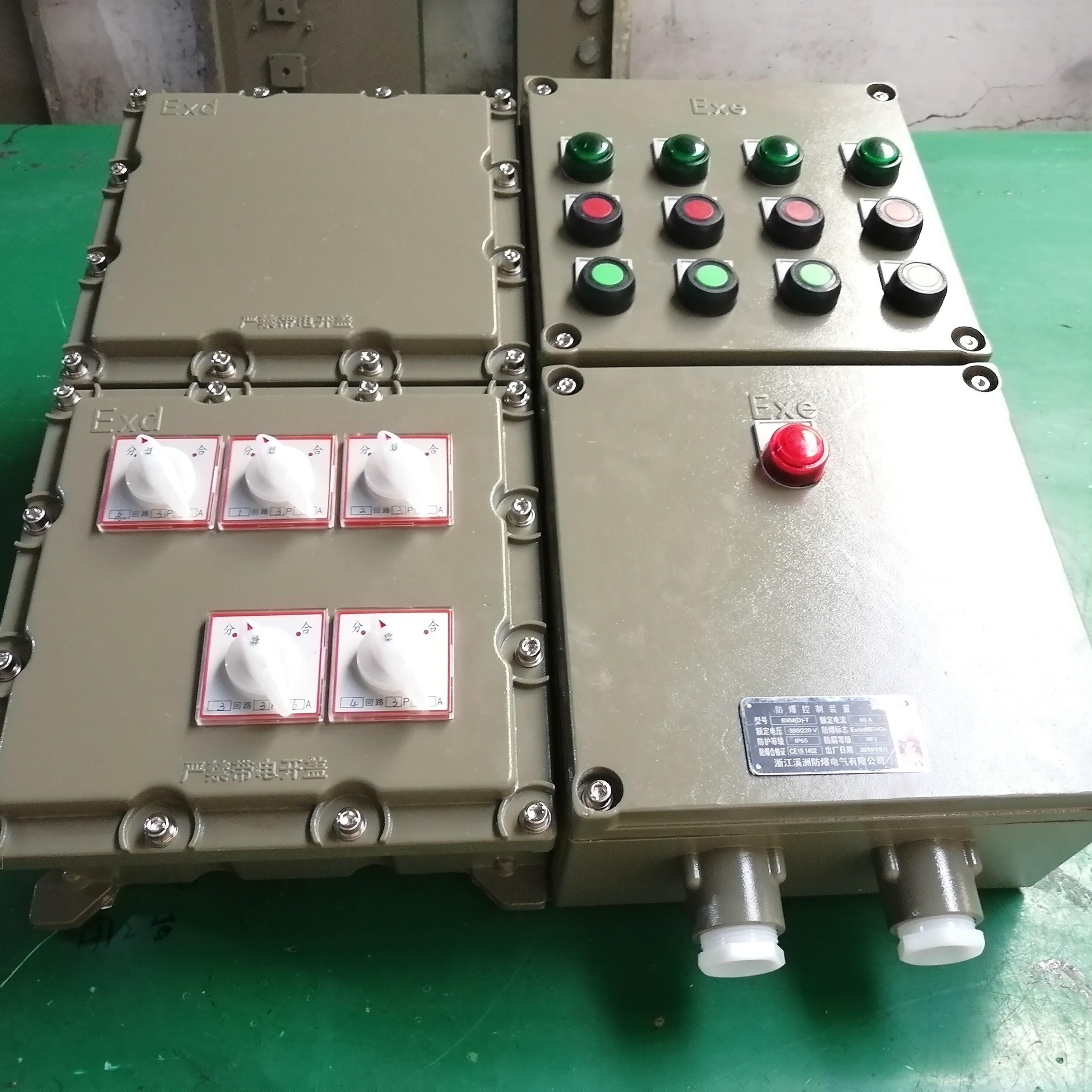 防爆照明动力配电箱1总4分复合型结构