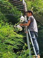 贺州平桂区红外摄像机视频监控钟山安防监控