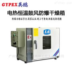 柳州防爆鼓风干燥箱-GW系列